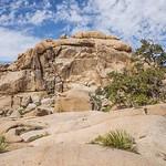 แค้มป์ปิ้ง ใน Hidden Valley ใต้ ต้นโจชัว และปีนป่ายภูเขาหิน ณ อุทยานแห่งชาติ� ...